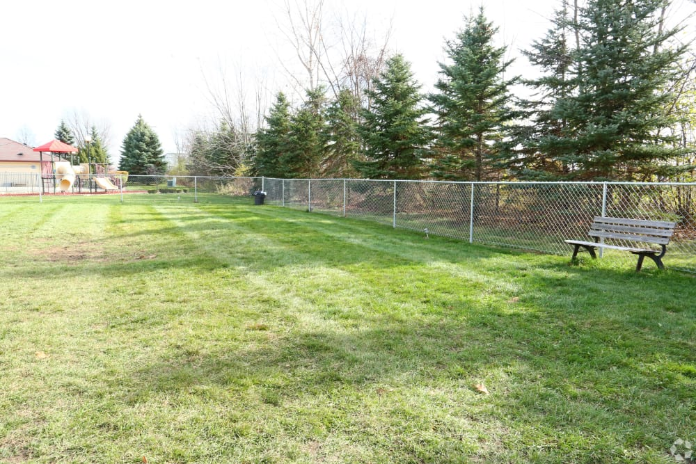Large onsite dog park at Stone Crest in Mt Pleasant, Michigan