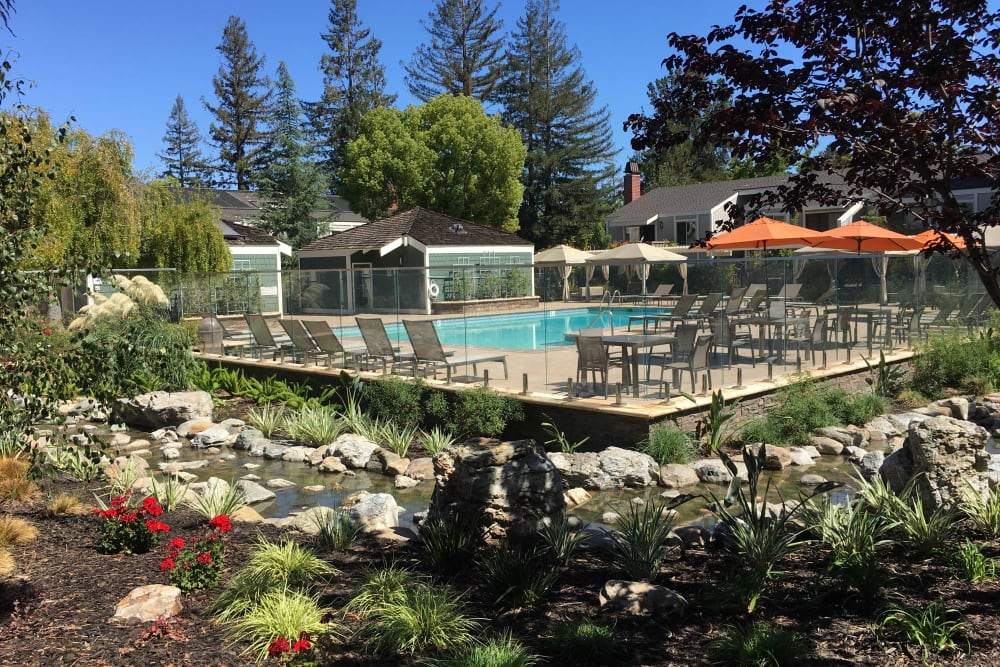 Landscaping next to pool at Glenbrook Apartments in Cupertino, California