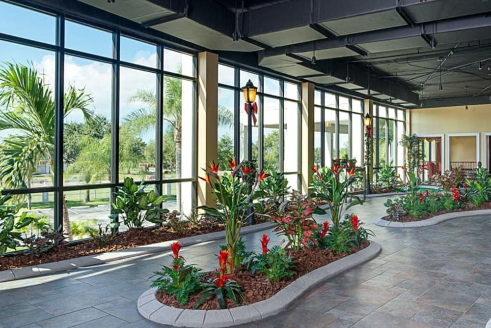 Front foyer greenery at Grand Villa of St. Petersburg in Florida