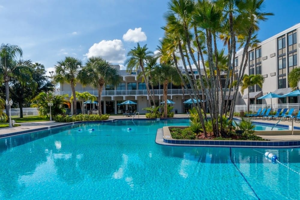 Swimming pool at Grand Villa of St. Petersburg in St. Petersburg, Florida