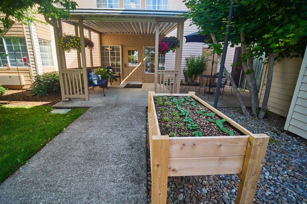 Raised garden bed at Emerald Gardens in Woodburn, Oregon