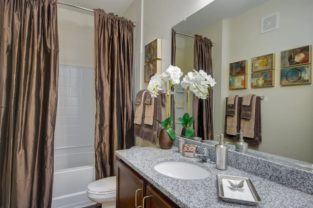 Bright bathroom at Oasis at Montclair Apartments in Dumfries, Virginia