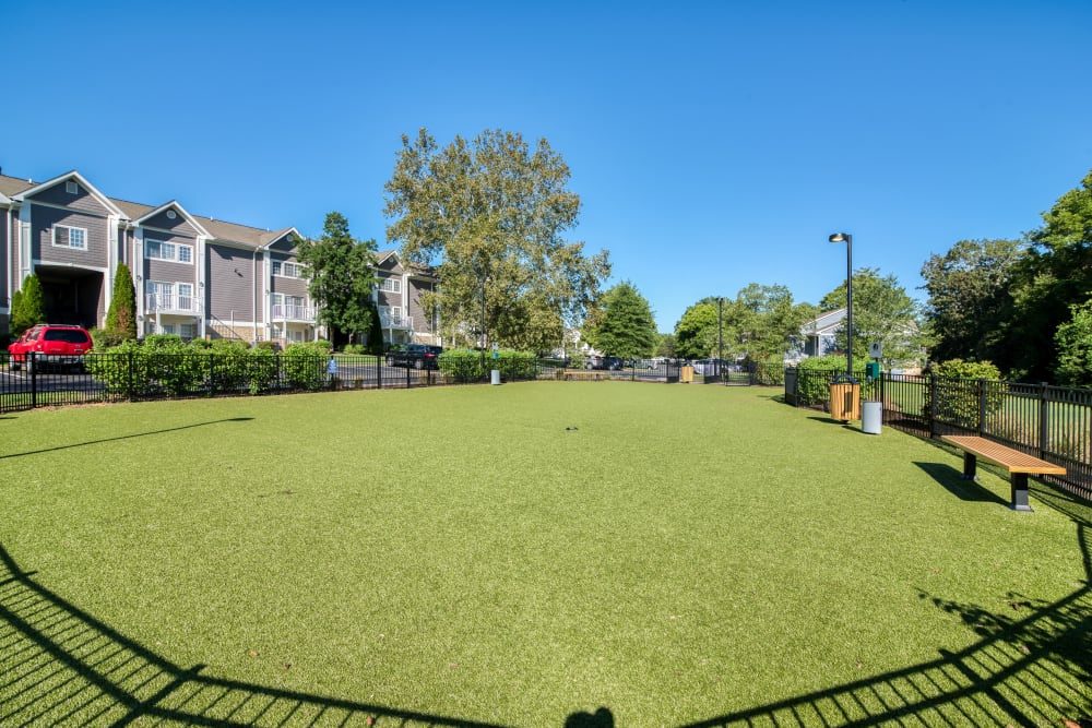 Onsite dog park at 865 Bellevue Apartments in Nashville, Tennessee