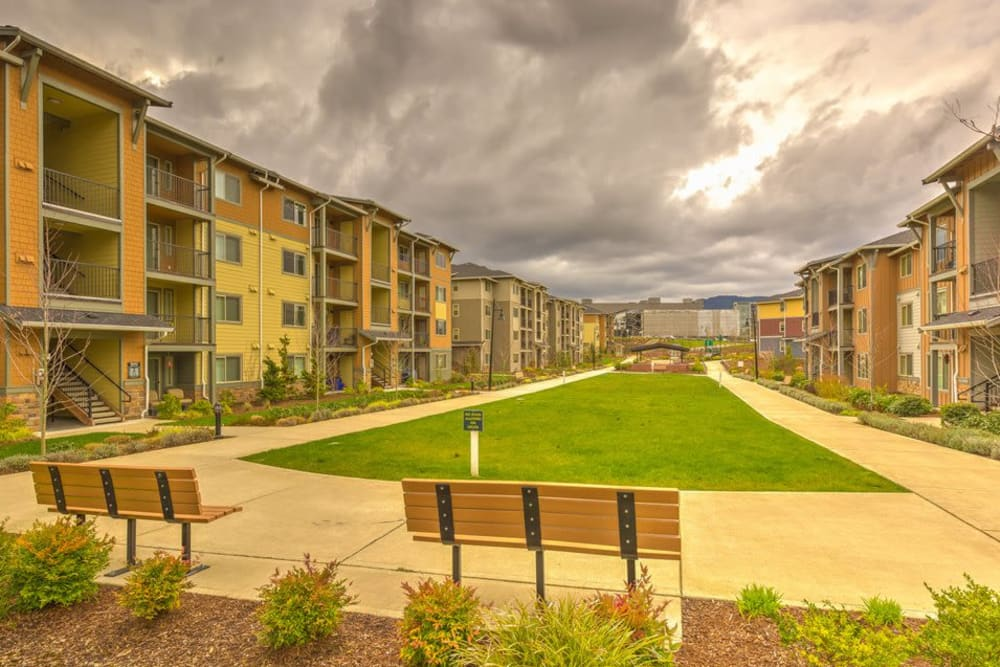 Large grass lawn between buildings at Vue Issaquah in Issaquah, Washington