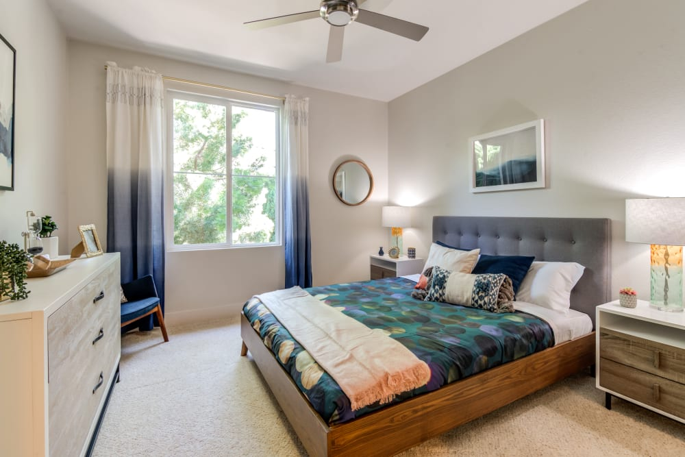 Large master bedroom with plush carpeting in a model home at Sofi Shadowridge in Vista, California
