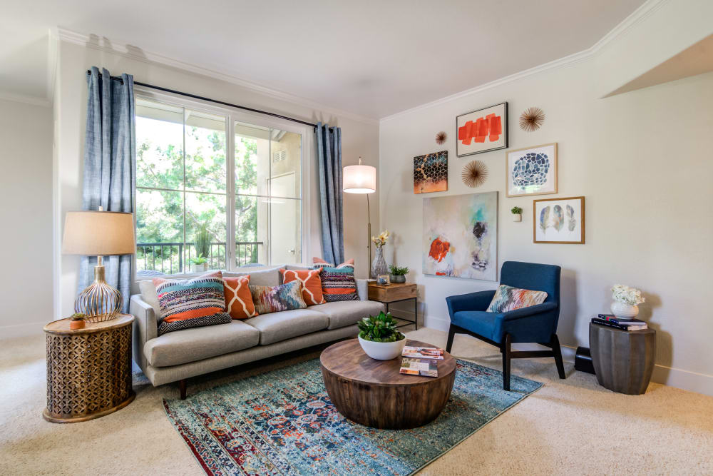 Living room with plush carpeting at Sofi Shadowridge in Vista, California
