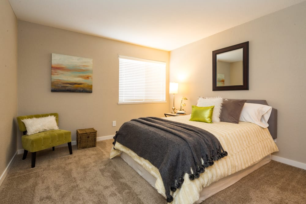 Spacious bedroom with plush carpeting at Haven Martinez in Martinez, California