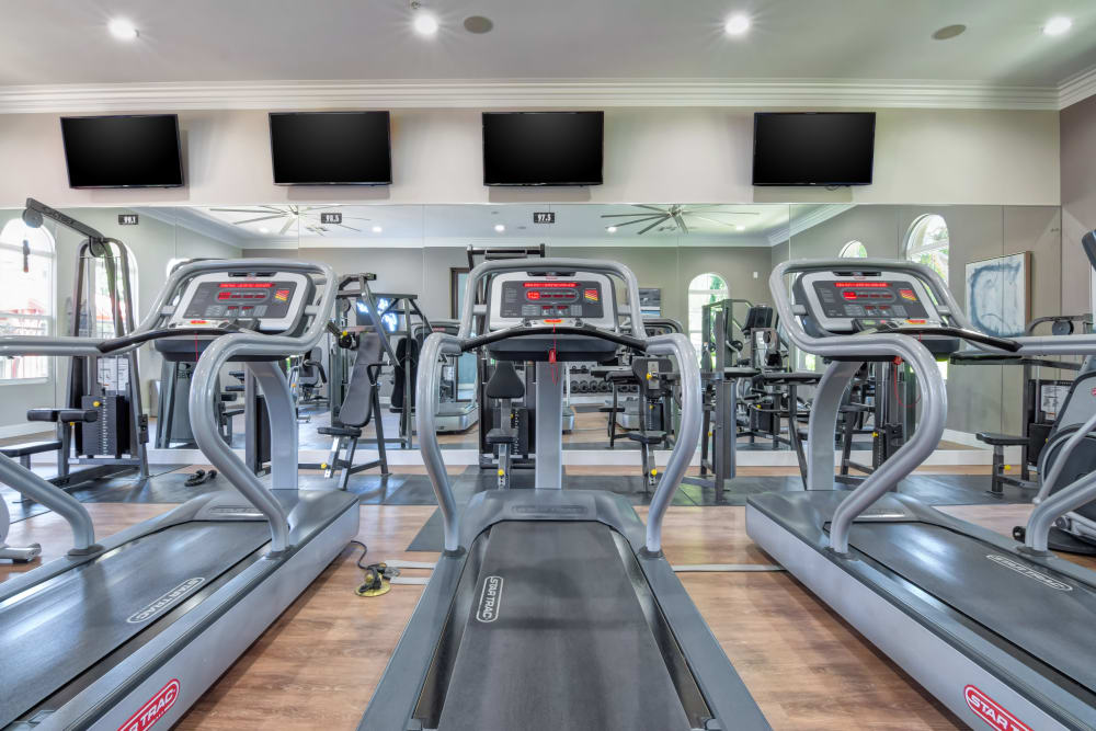 Individual treadmills in the fitness center at Sofi Shadowridge in Vista, California