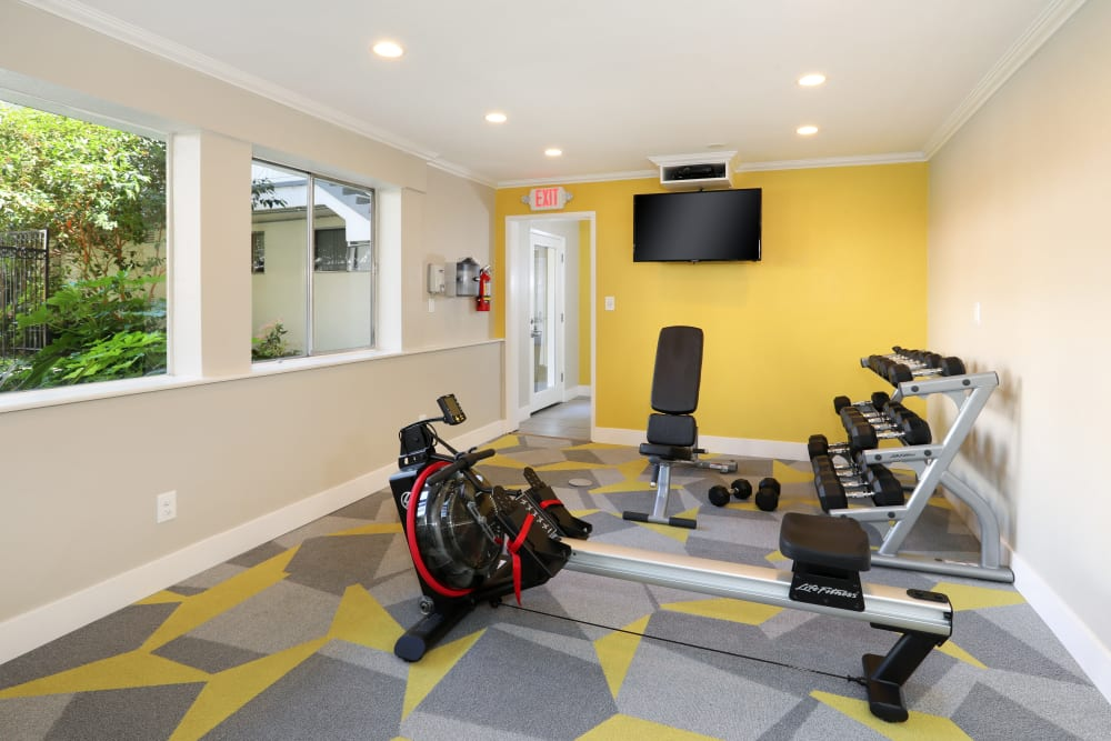 Flatscreen TV, free weights, and more in the onsite fitness center at Sofi Redwood Park in Redwood City, California