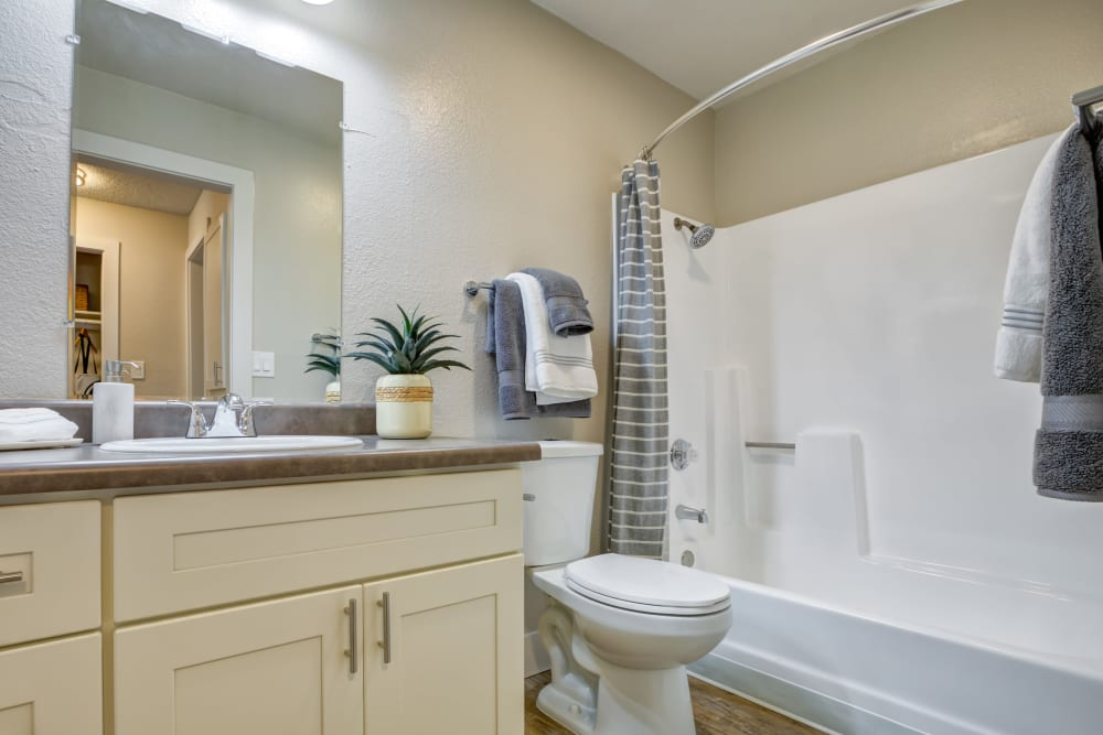 Large vanity mirror and a tiled shower in the bathroom of a model home at Sofi Union City in Union City, California
