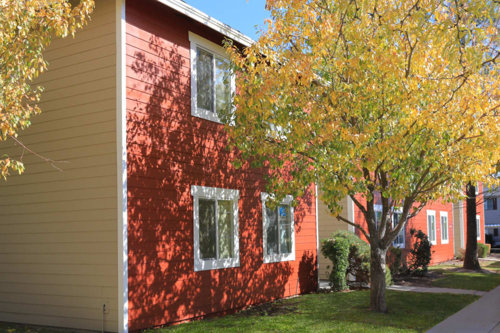 Mature trees and colorful resident buildings at Overlook Point Apartments in Salt Lake City, Utah