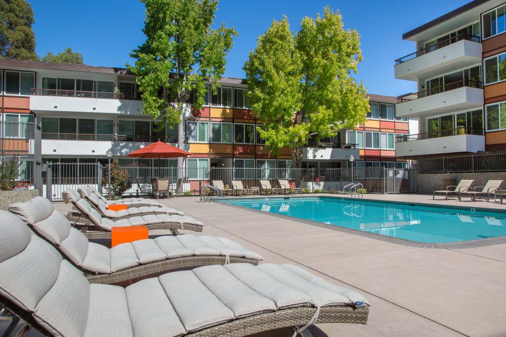 Plenty of lounge chairs near the pool at Sofi Belmont Glen in Belmont, California