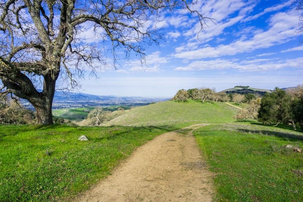 Lush hills in Gilroy, California near Cypress Pointe Apartments