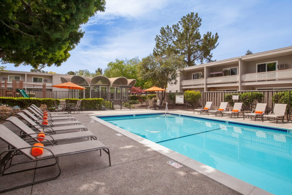 Sparkling swimming pool at Halford Gardens Apartments in Santa Clara, California
