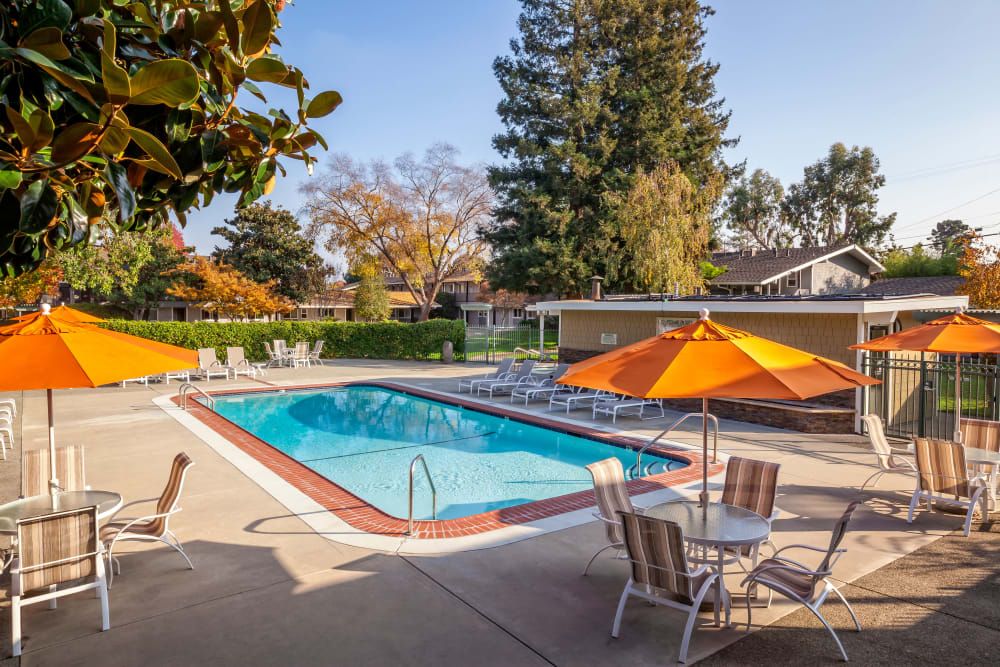 Relaxing amenities at Parkwood Apartments in Sunnyvale, California