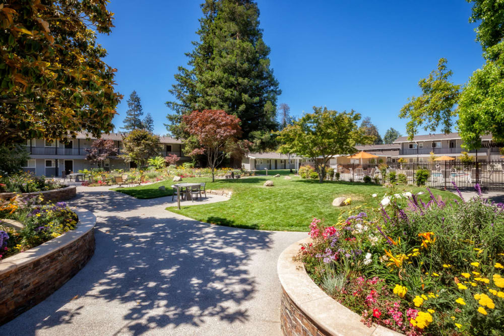 Lush courtyard at Parkwood Apartments in Sunnyvale, California