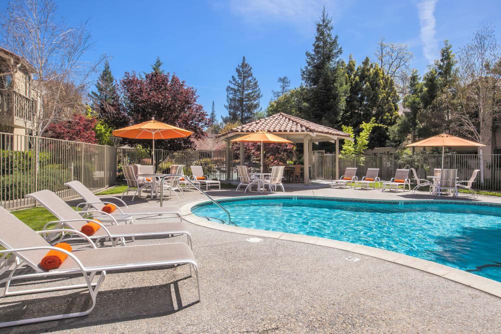 Resort-style swimming pool at Spring Creek Apartments in Santa Clara, California
