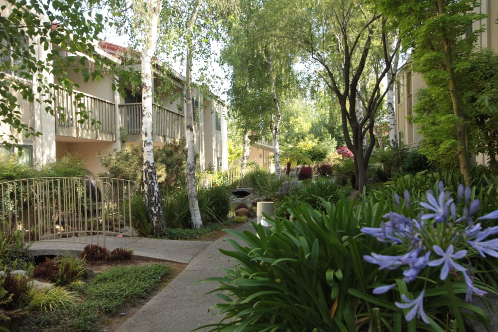 Walkway at Spring Creek Apartments in Santa Clara, California