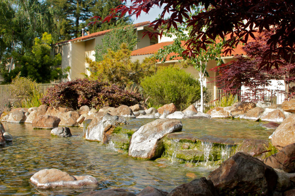 Water feature at Spring Creek Apartments in Santa Clara, California