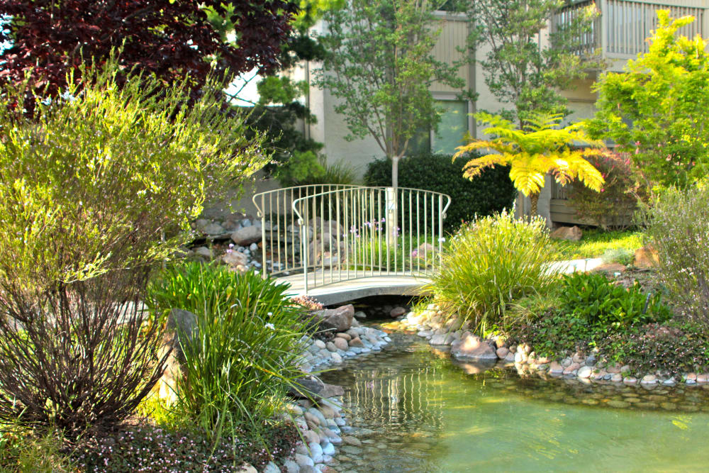 Lush landscape at Spring Creek Apartments in Santa Clara, California