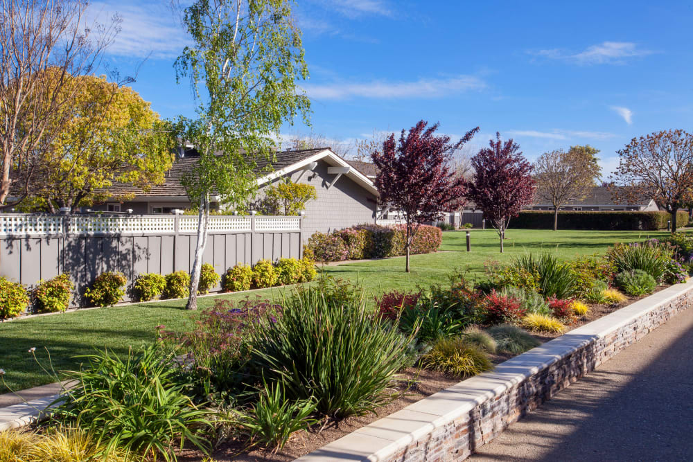 Well-kept landscape at Village Green Apartments in Cupertino, California