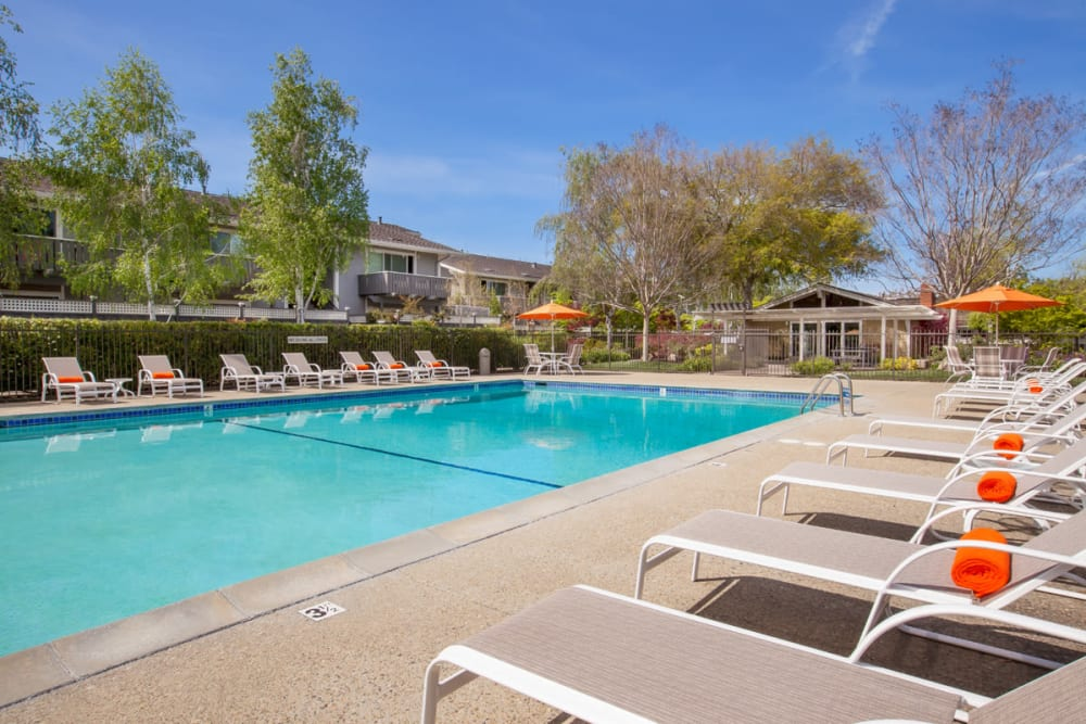 Pool with lounge chairs at Village Green Apartments in Cupertino, California