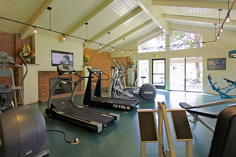 Fitness amenities at Village Green Apartments in Cupertino, California
