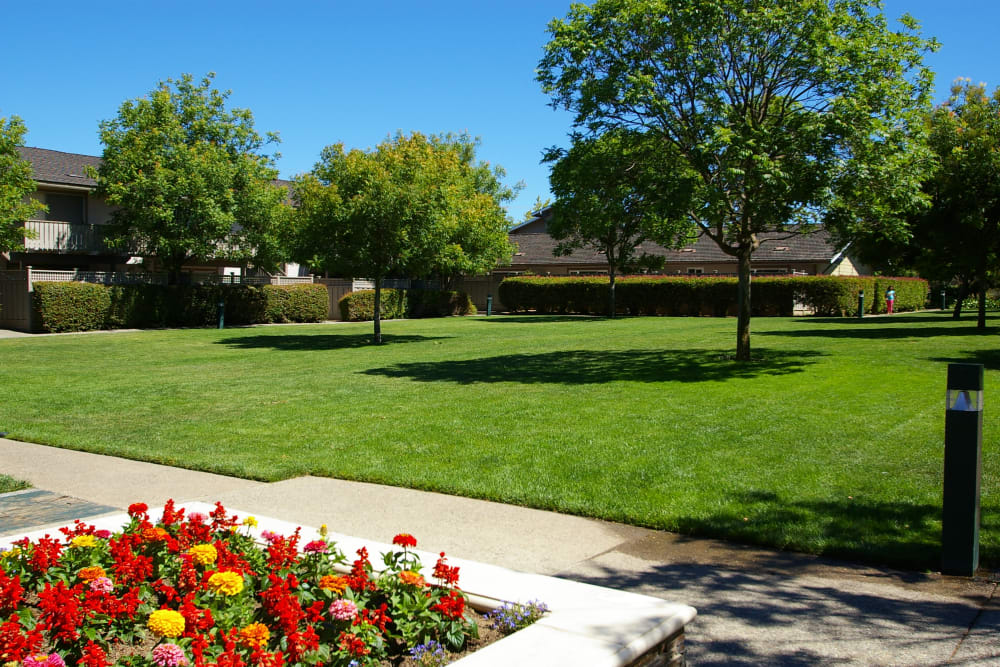 Play amenities at Village Green Apartments in Cupertino, California