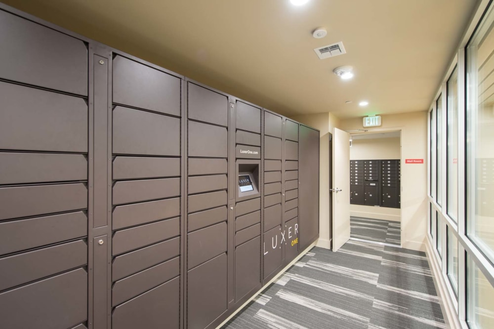 Package Lockers at Preserve at Cradlerock Apartment Homes in Columbia, Maryland