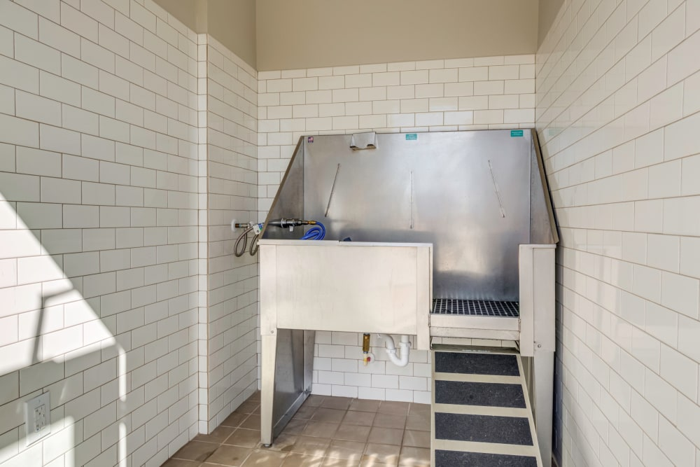 Pet Friendly Apartments at The Stanton with a dog washing station