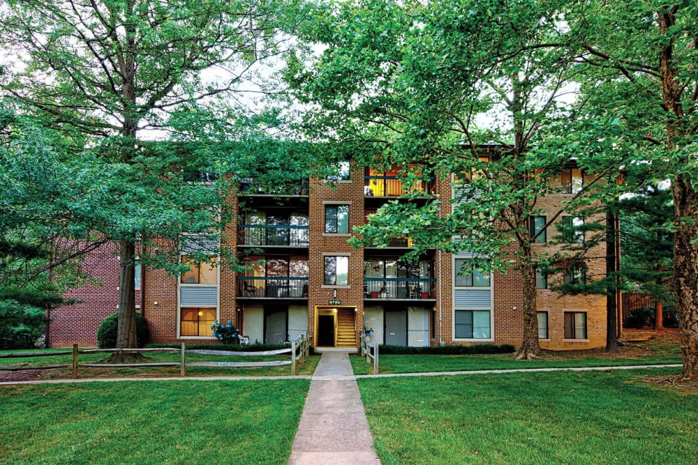 Green grass and mature trees outside resident buildings at The Timbers at Long Reach Apartments in Columbia, Maryland