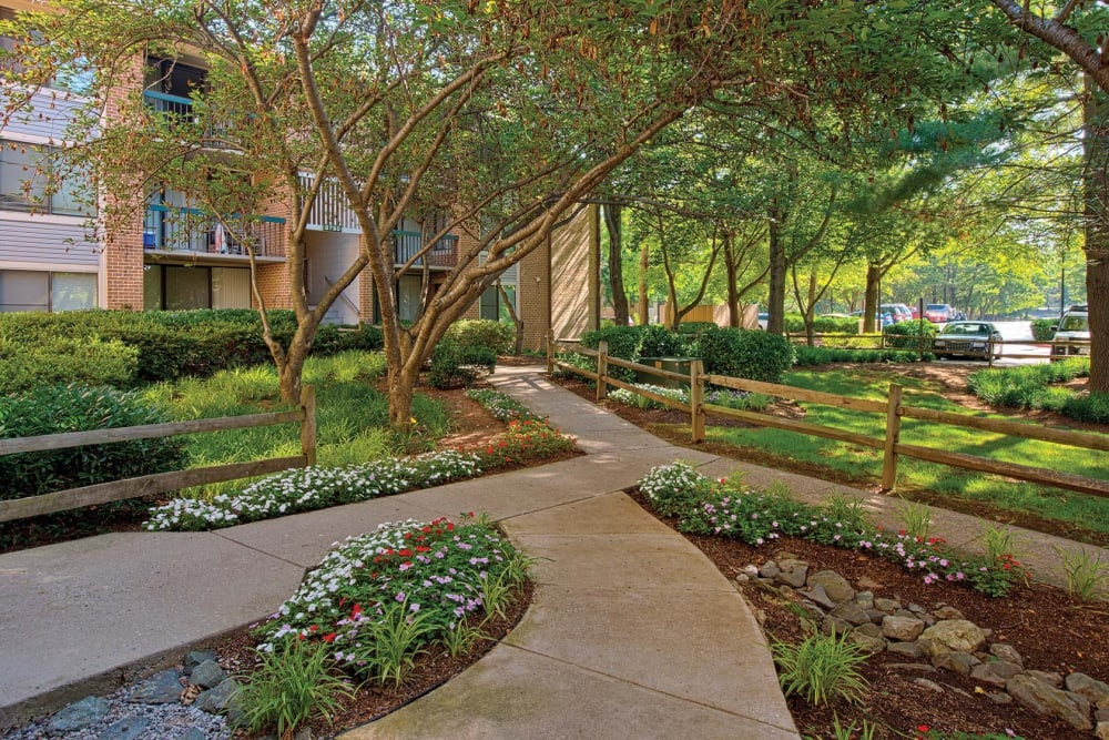 Mature trees and professionally maintained landscaping at The Timbers at Long Reach Apartments in Columbia, Maryland