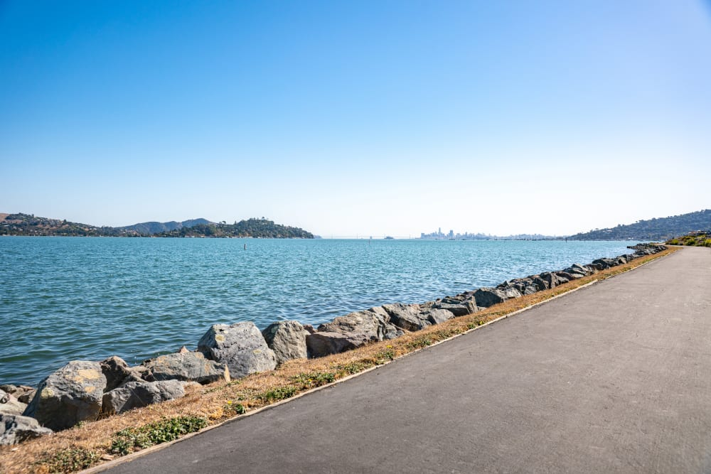 Driveway alongside the bay on a beautiful day at Harbor Point Apartments in Mill Valley, California