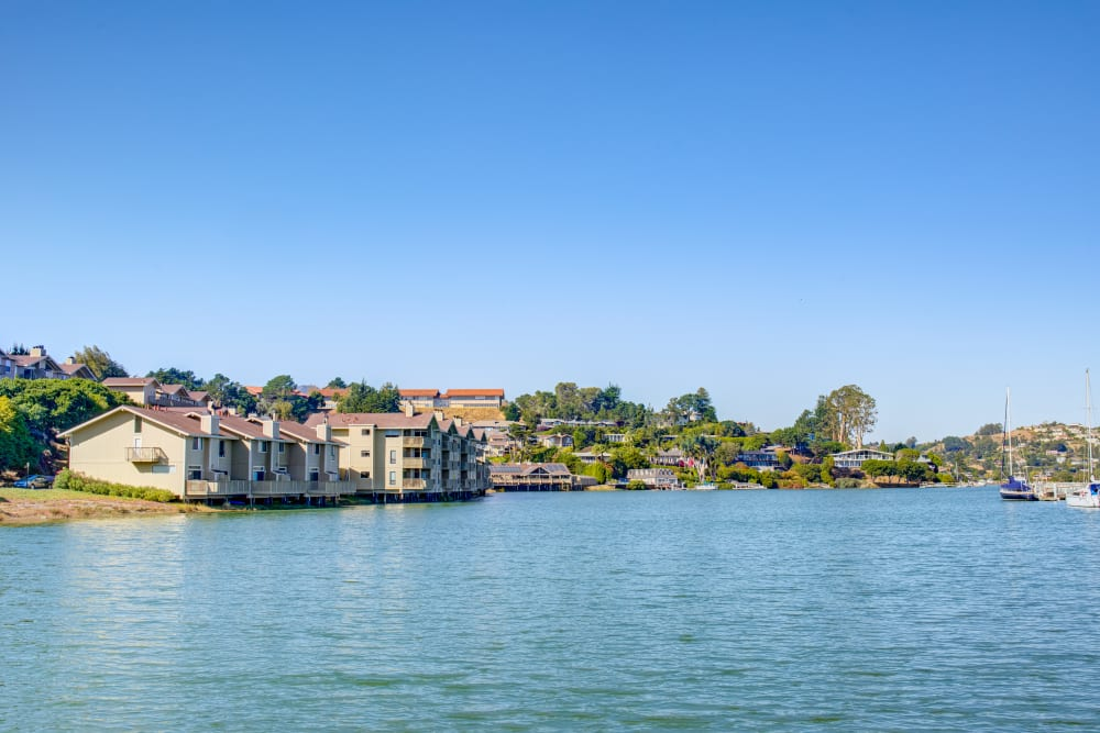 Our community from across the bay at Harbor Point Apartments in Mill Valley, California
