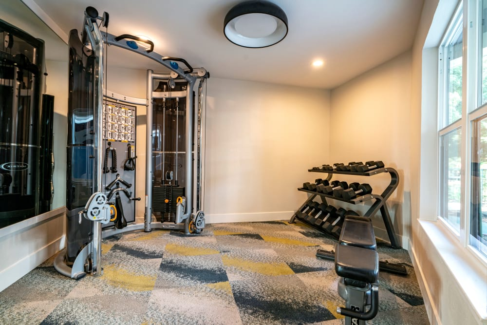 Onsite fitness center at Terra Martinez in Martinez, California