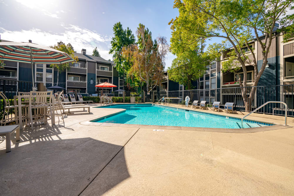 Swimming pool area on a beautiful day at Terra Martinez in Martinez, California