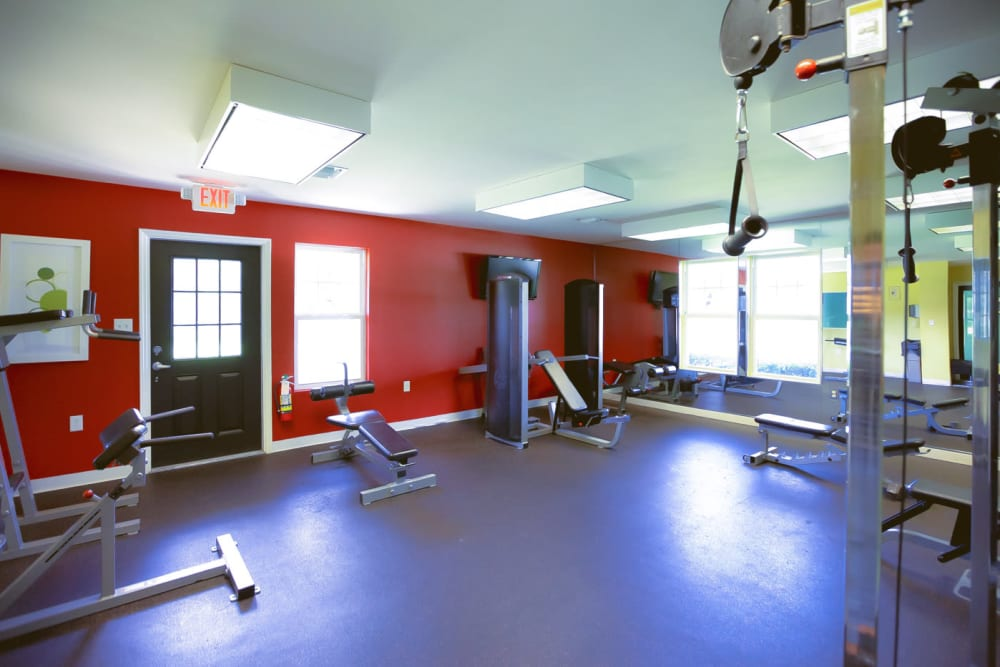 Well-equipped fitness center at Signal Pointe Apartment Homes in Winter Park, Florida