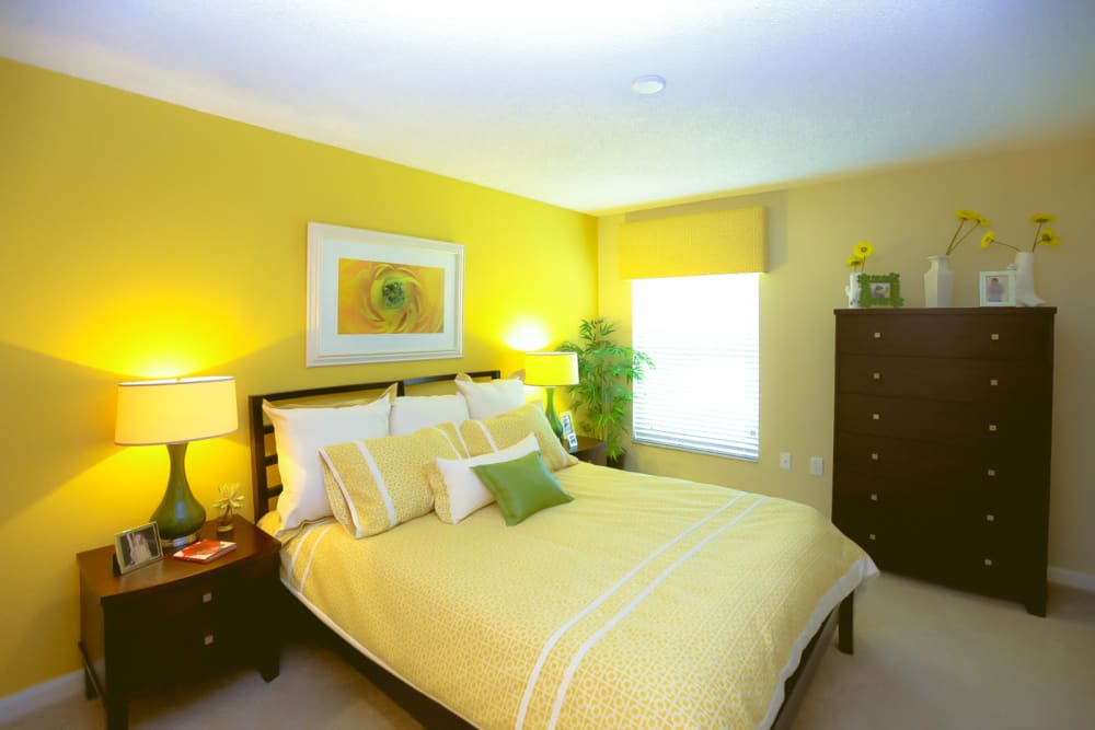 Bright and cheery master bedroom with an accent wall in a model home at Signal Pointe Apartment Homes in Winter Park, Florida