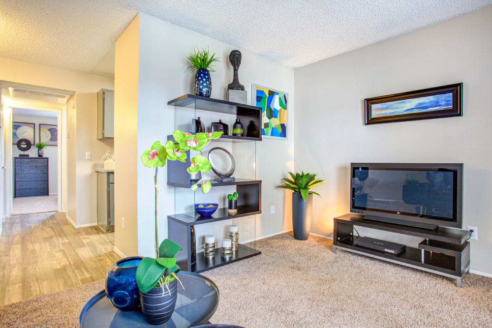 Verde Apartments offers a Living Room in Tucson, Arizona