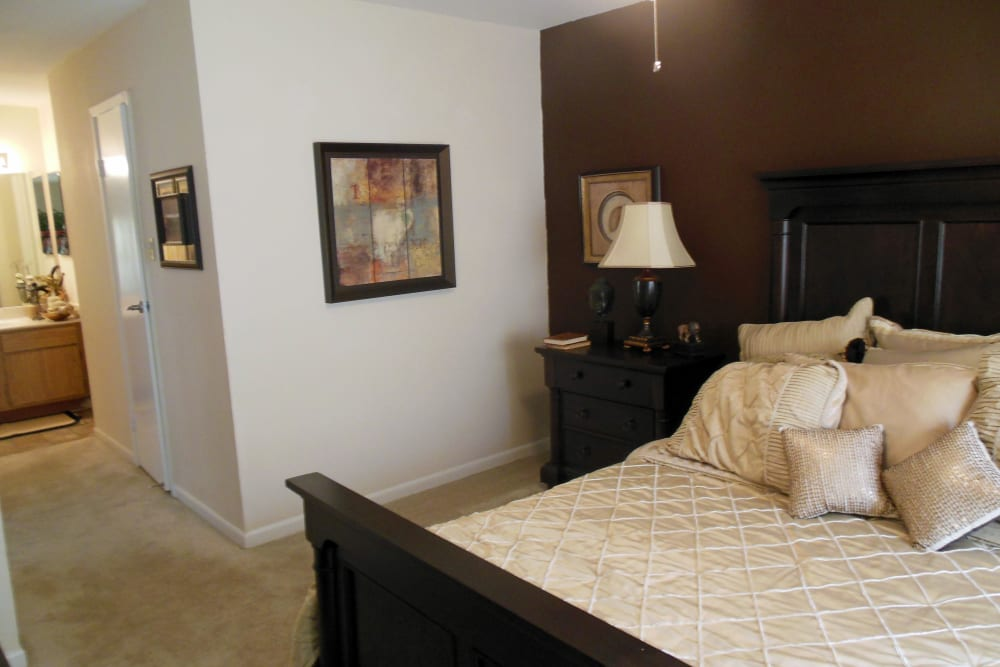 Spacious master bedroom with plush carpeting and an accent wall in a model home at Walden Pond in Houston, Texas