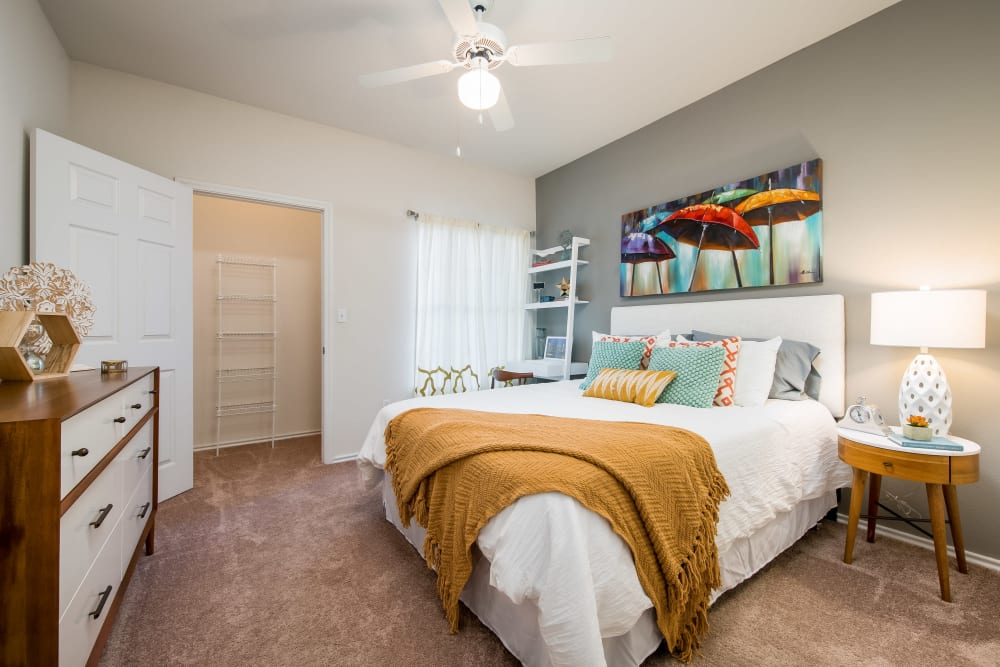 Spacious master bedroom with a ceiling fan and an accent wall in a model home at Rockbrook Creek in Lewisville, Texas