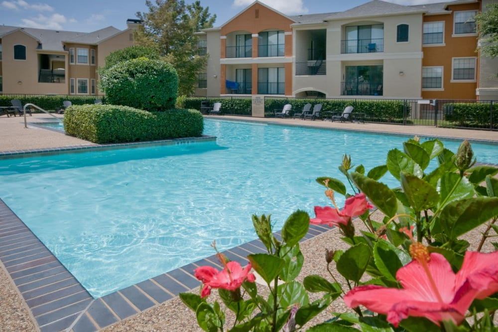 Resort-style swimming pool with beautifully maintained flora nearby at Rockbrook Creek in Lewisville, Texas