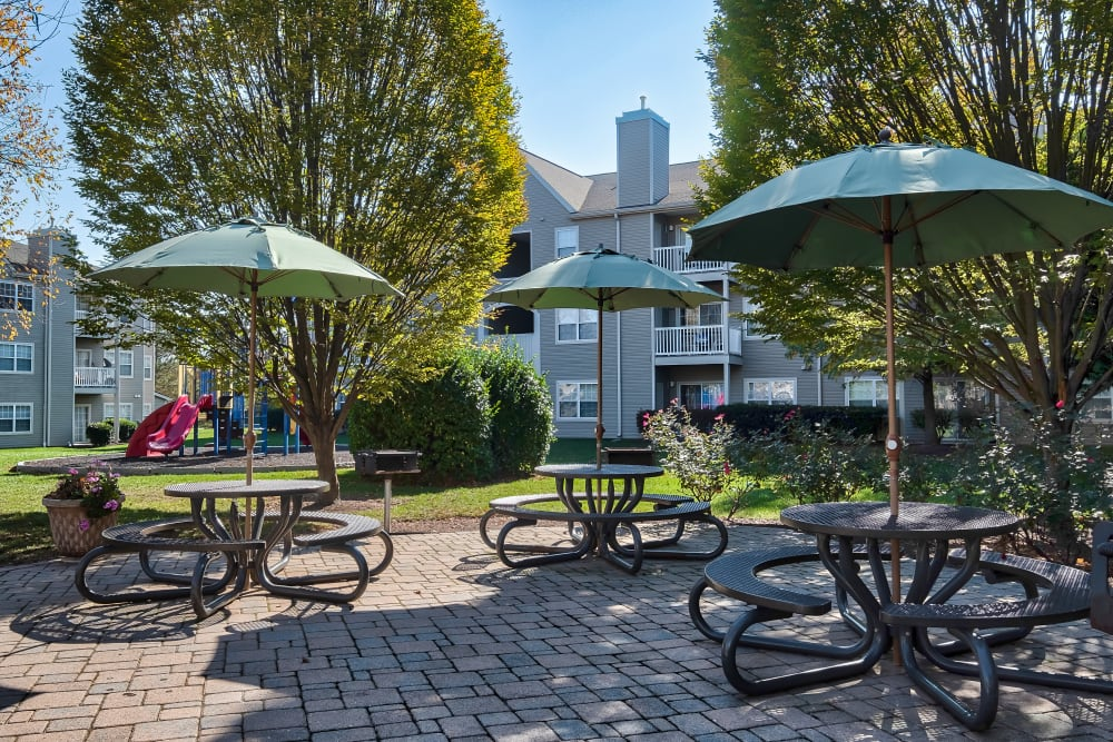 Outdoor picnic area The Reserve at Ballenger Creek Apartments in Frederick, Maryland