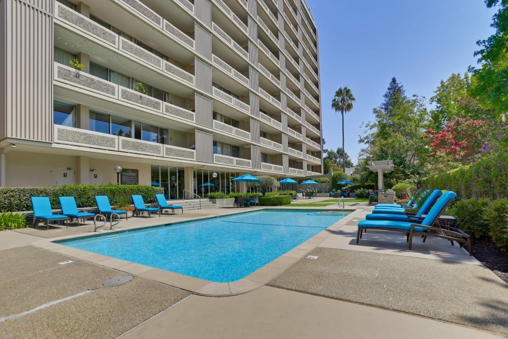 Community swimming pool at The Marc, Palo Alto in Palo Alto, California