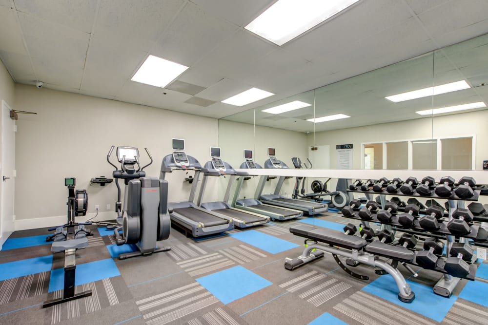 Free weights and cardio machines in the fitness center at Sofi at 3rd in Long Beach, California
