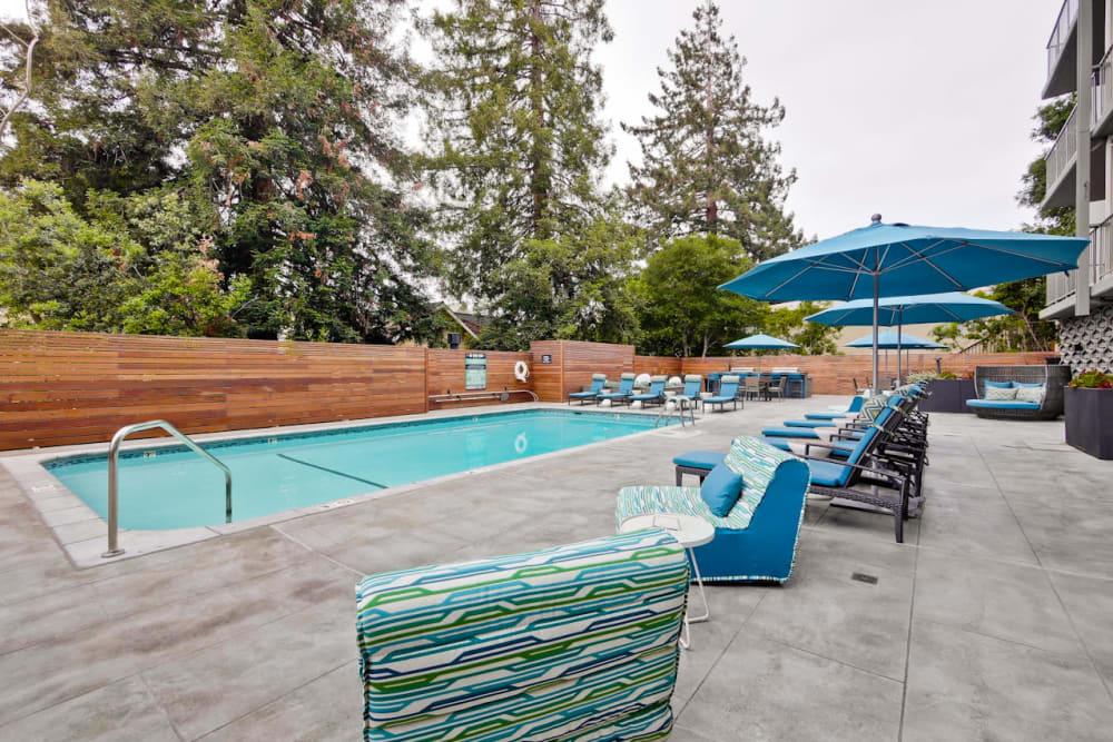 Resort-style swimming pool at Mia in Palo Alto, California