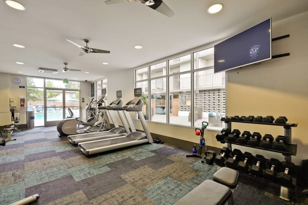 Well-equipped fitness center with free weights at Mia in Palo Alto, California