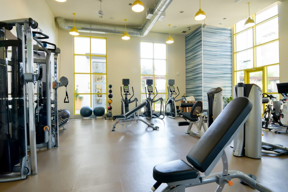 Fitness center with plenty of individual workout stations at Domus on the Boulevard in Mountain View, California