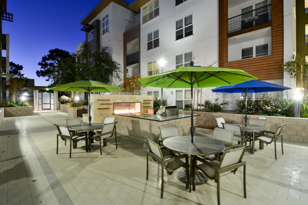 Outdoor dining tables with umbrellas at Domus on the Boulevard in Mountain View, California