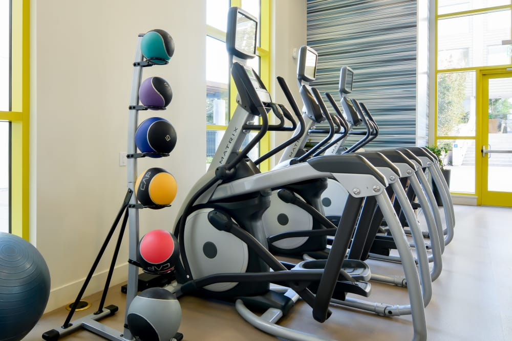 Resident gym with individual workout stations at Domus on the Boulevard in Mountain View, California